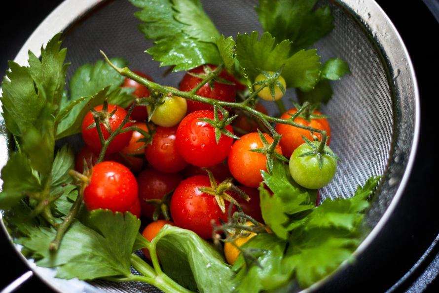 pomidorki 014
