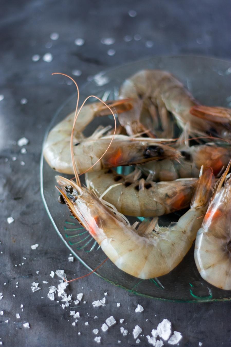 seafood 007